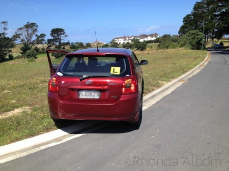 Learner-driver-on-the-grass-in-New-Zealand